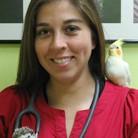 Dra. Andrea Díaz G.